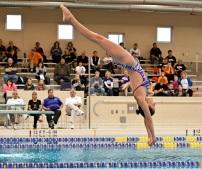 Regionals Diving
